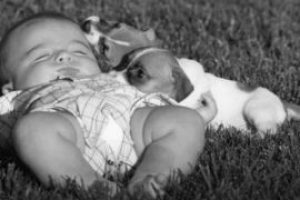 kid-and-dog-270x270